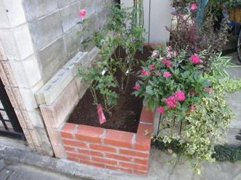 植物が好きで、バラの地植えをお考えの方に向けた施工事例です。<br>この事例を読む事で、花壇を作る様子を知ることが出来ます。<br>このくらい大きな花壇につるバラを植えると、壁一面バラの庭を作る事が出来ますよ。